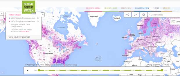 global forest watch - forest maps