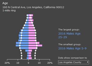 infographics age pyramid