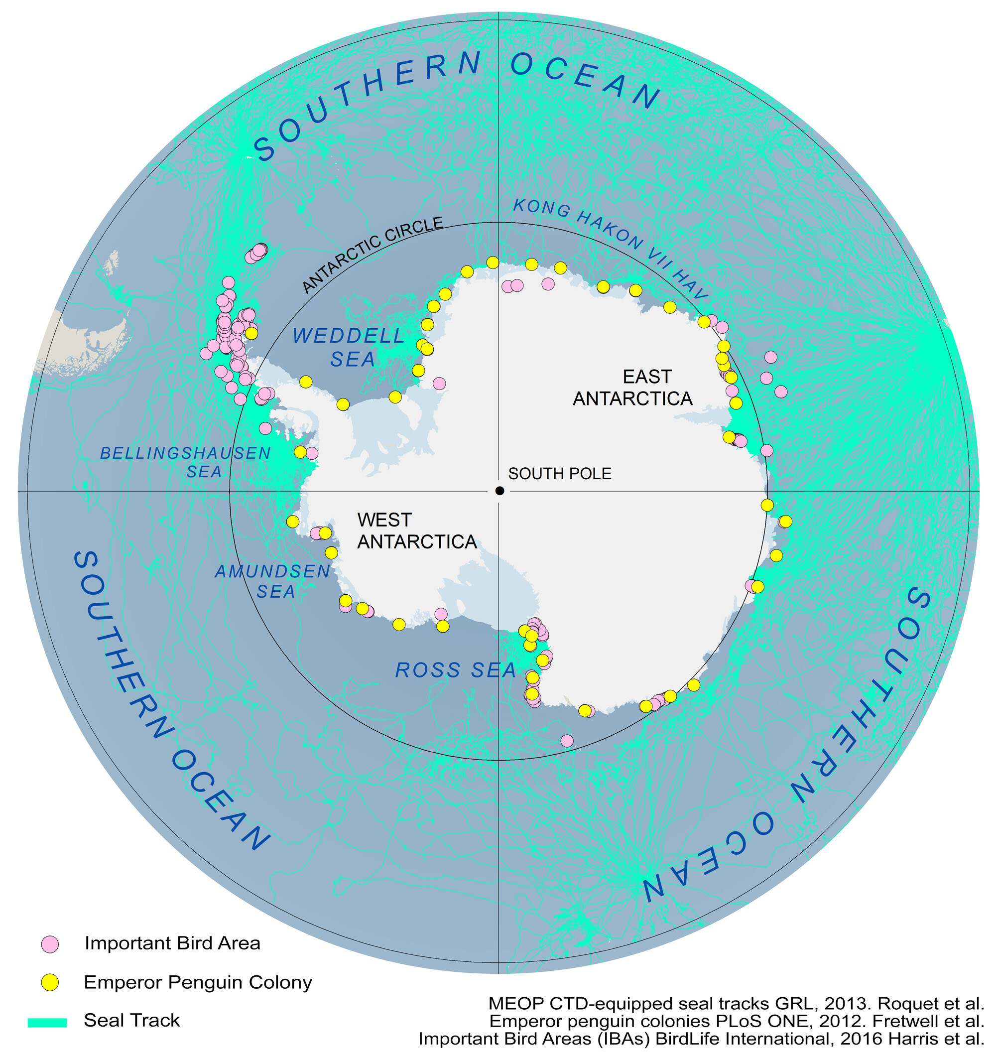 Antarctica Map and Satellite Imagery [Free]