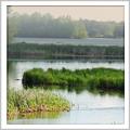 Locating Wetlands