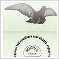 bavarian pigeon