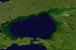Wetland Aerial