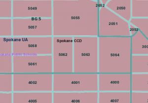 TIGER GIS Data