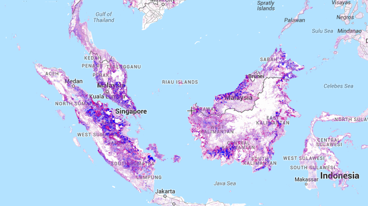 4 Global Forest Maps to See the Forest for the Trees