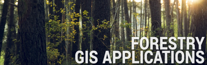 Forestry GIS Applications