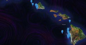 Smart Whale Tracker