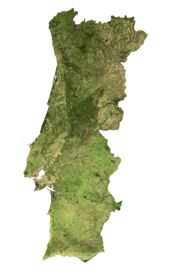 Portugal Satellite Map