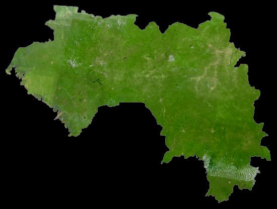 Guinea Satellite Map