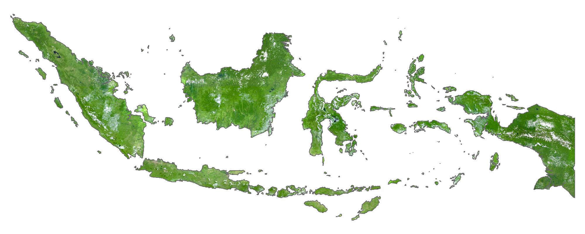 Indonesia Satellite Map