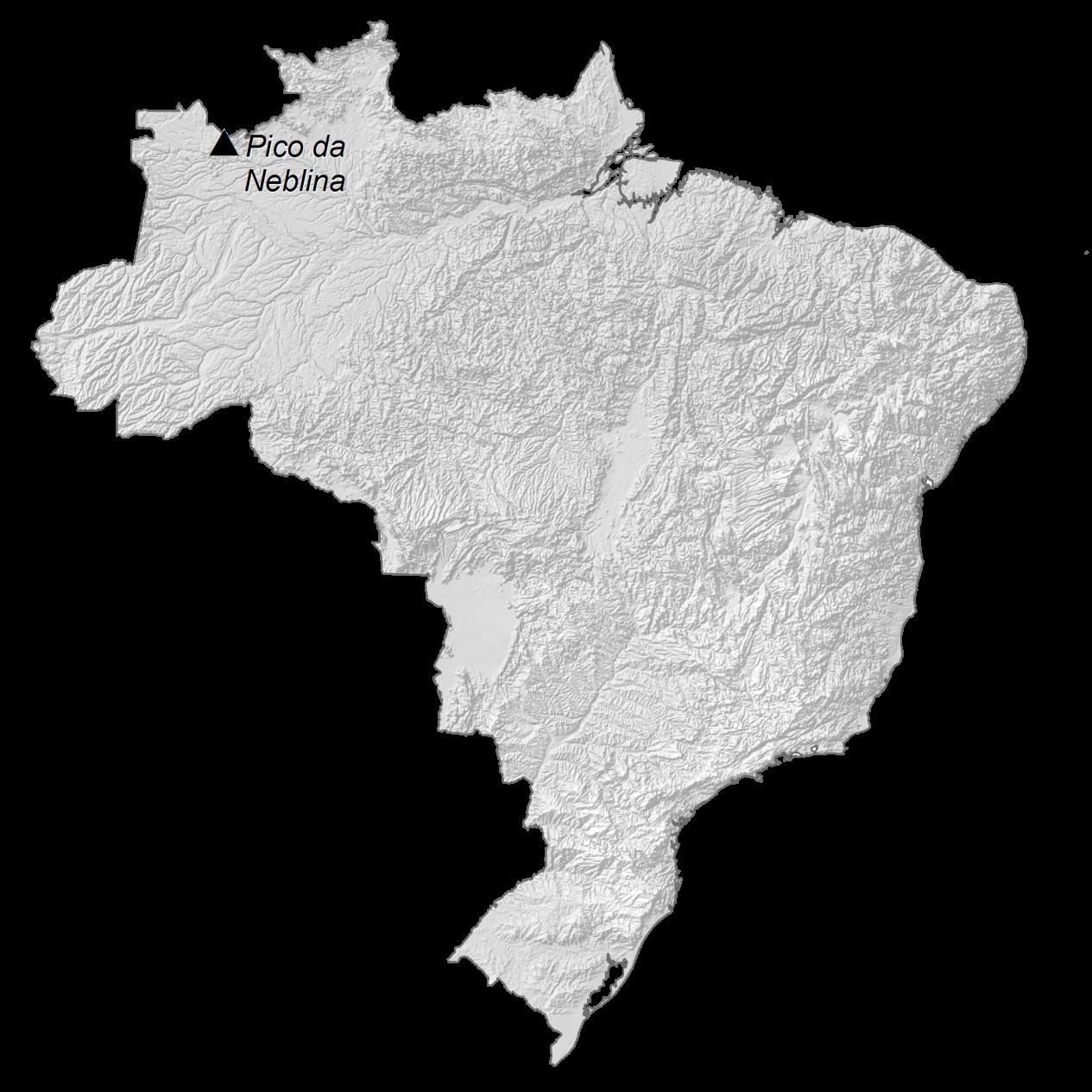 Brazil Elevation Map