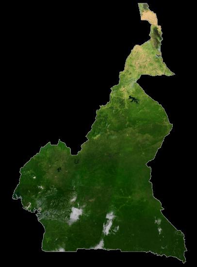 Cameroon Satellite Map