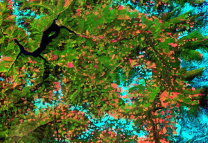 landsat remote sensing of the environment