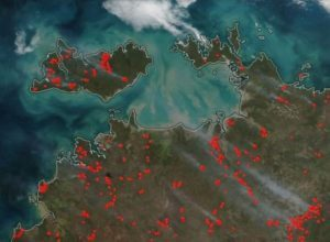 Active Forest Fires