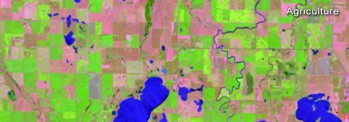 Landsat Agriculture