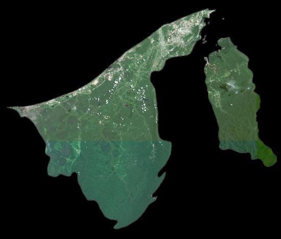 Brunei Satellite Map