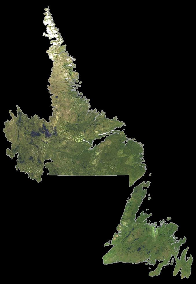 Newfoundland and Labrador Satellite Map