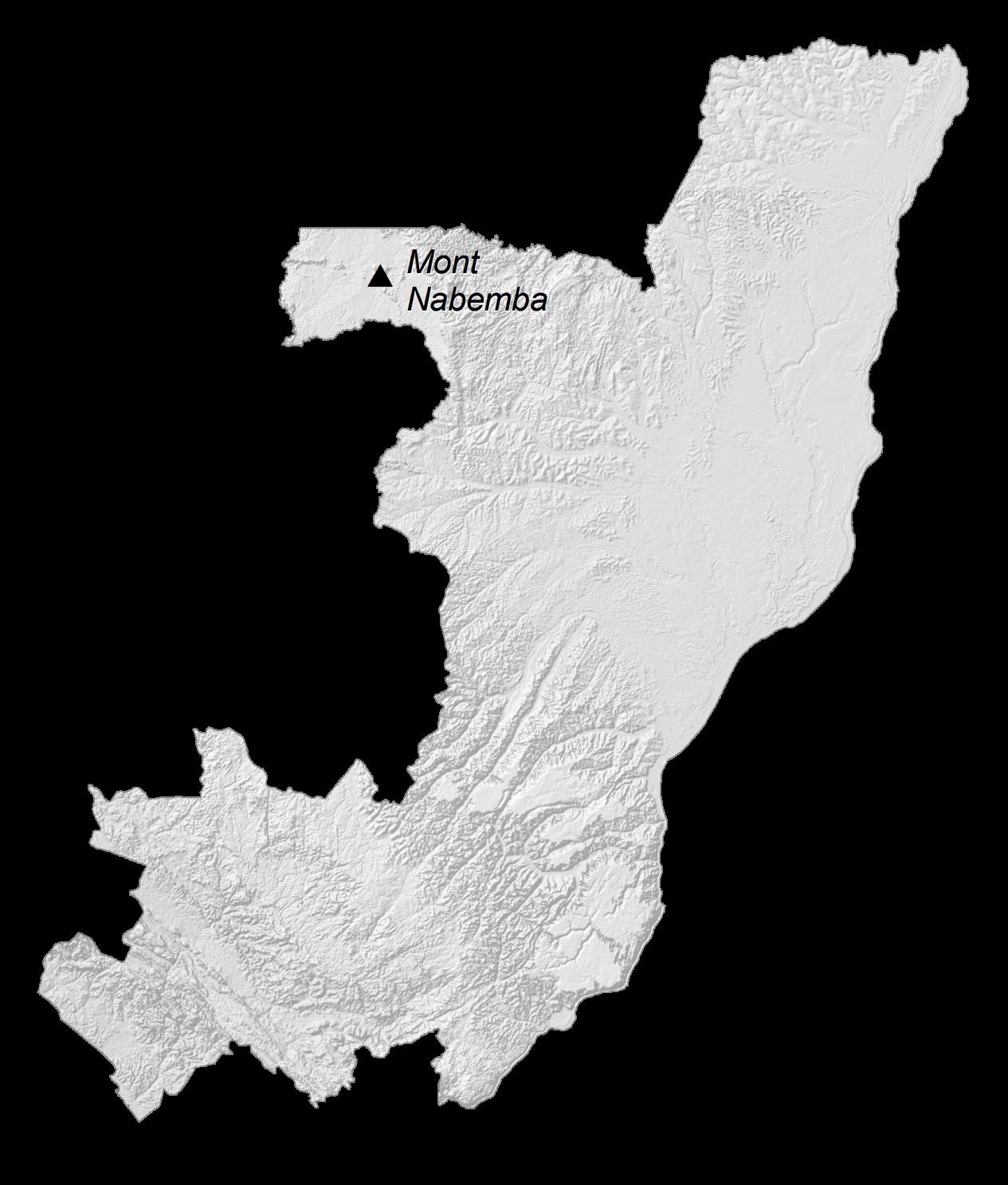 Congo Elevation Map