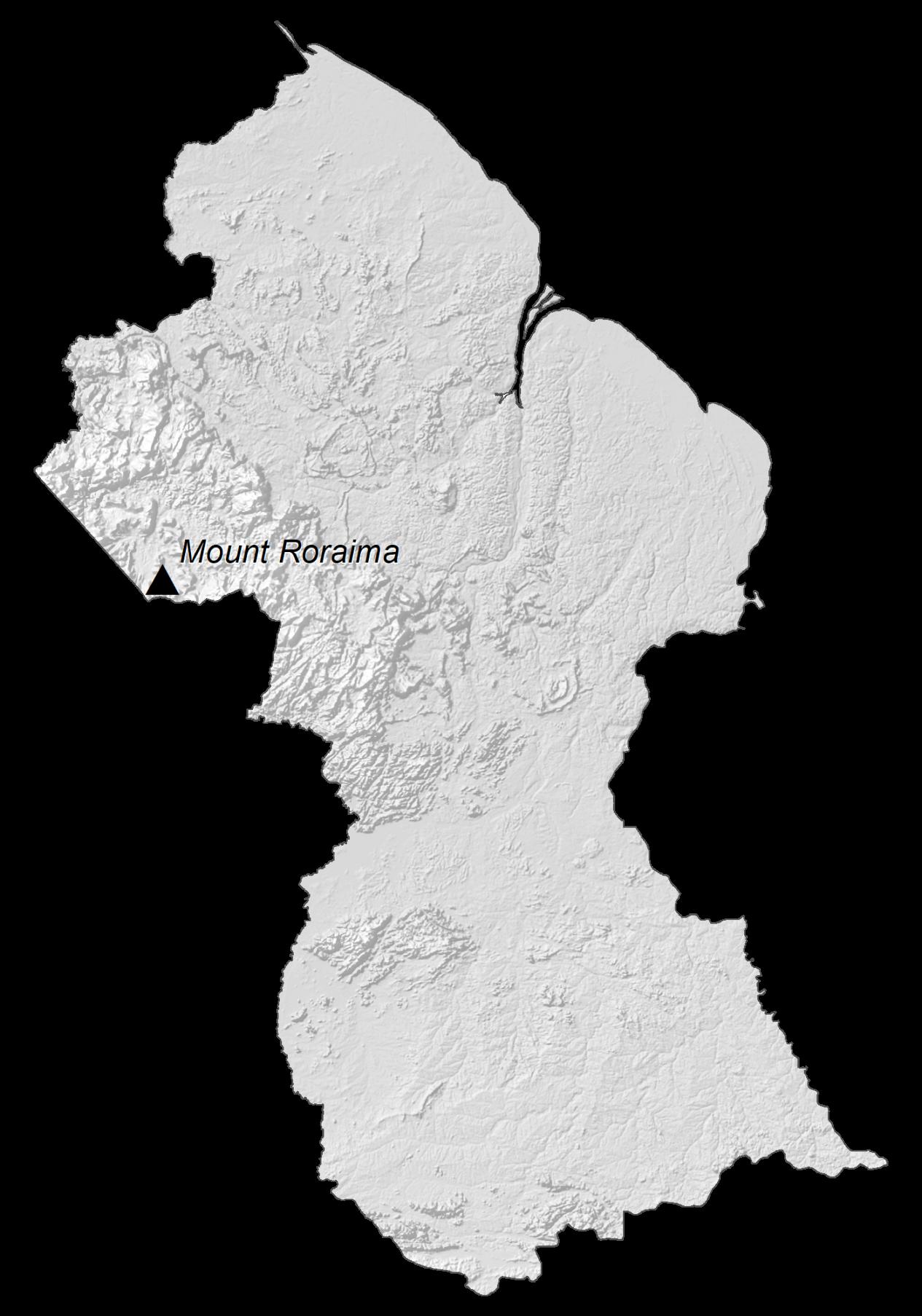 Guyana Elevation Map