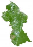 Guyana Satellite Map