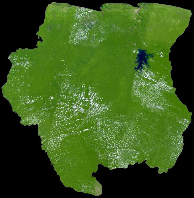 Suriname Satellite Map